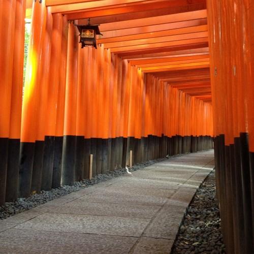 Fushimi Inari Shrine | Kyoto, JP.
